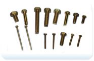 Brass Round Head Bolts